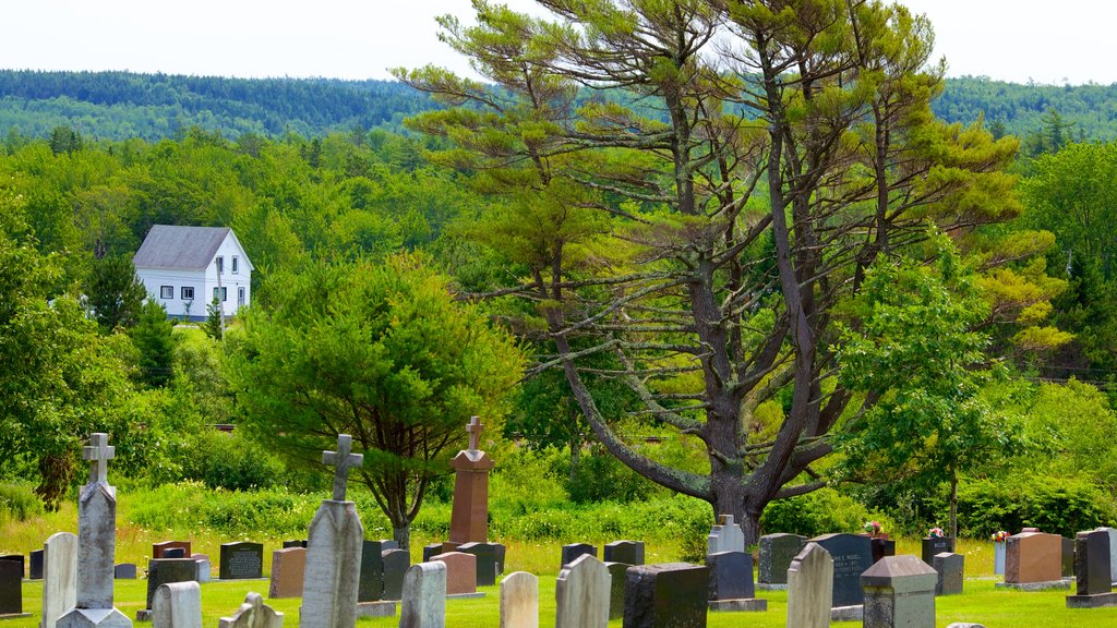 Enfield featuring a cemetery