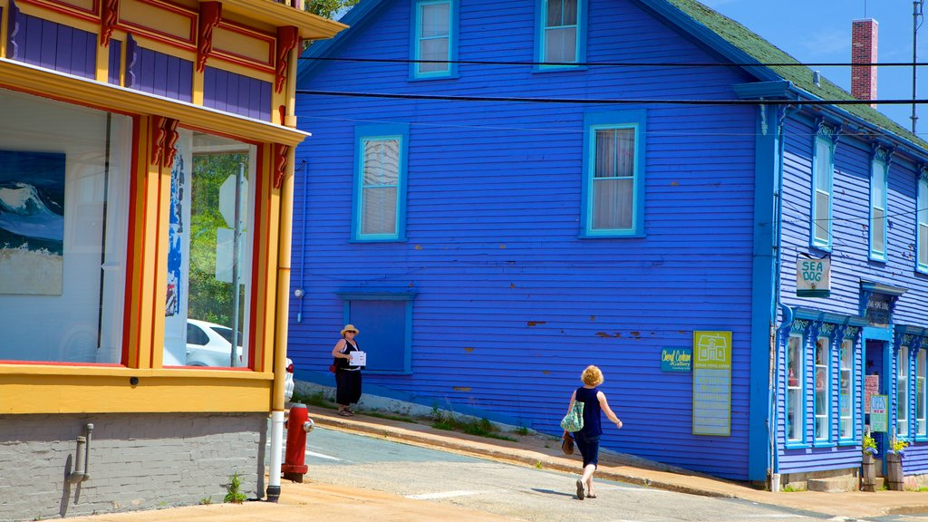 Lunenburg showing a house and street scenes