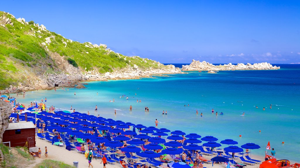 Santa Teresa di Gallura which includes a sandy beach