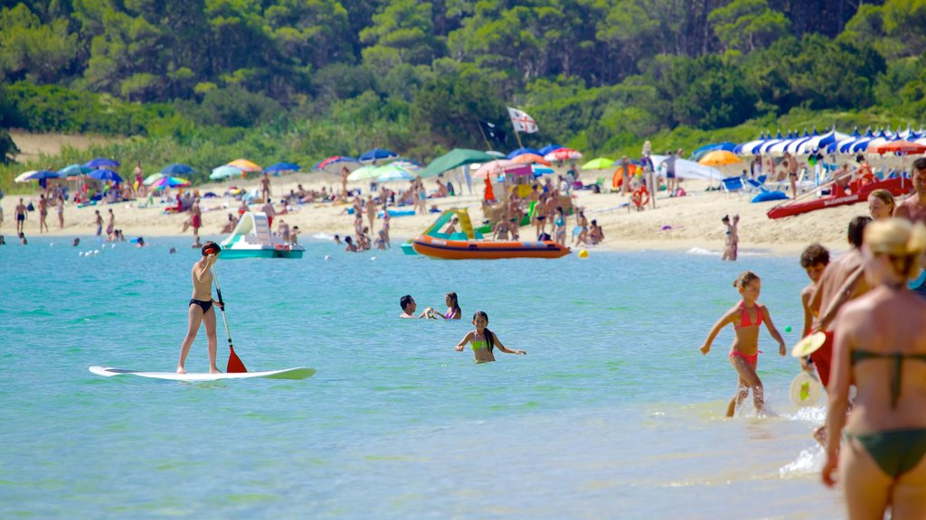 Cala Sinzias featuring watersports, swimming and a sandy beach