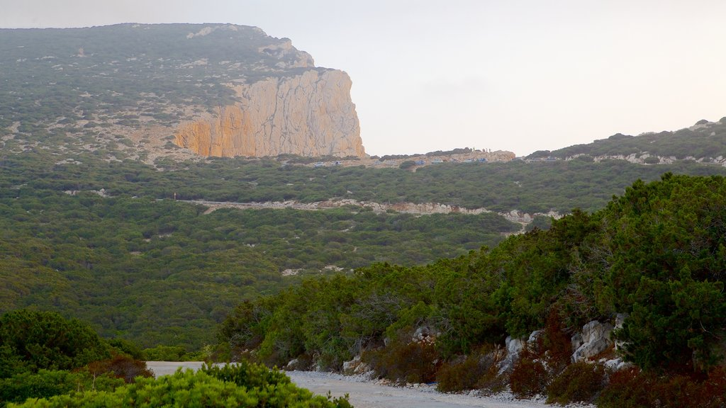 Capo Caccia showing landscape views