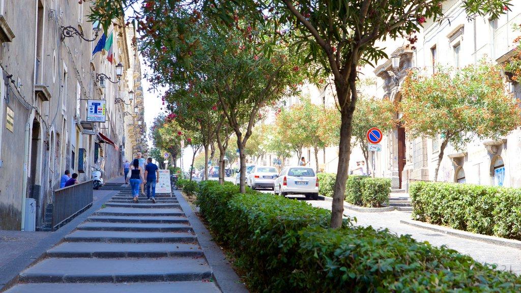 Catania showing street scenes