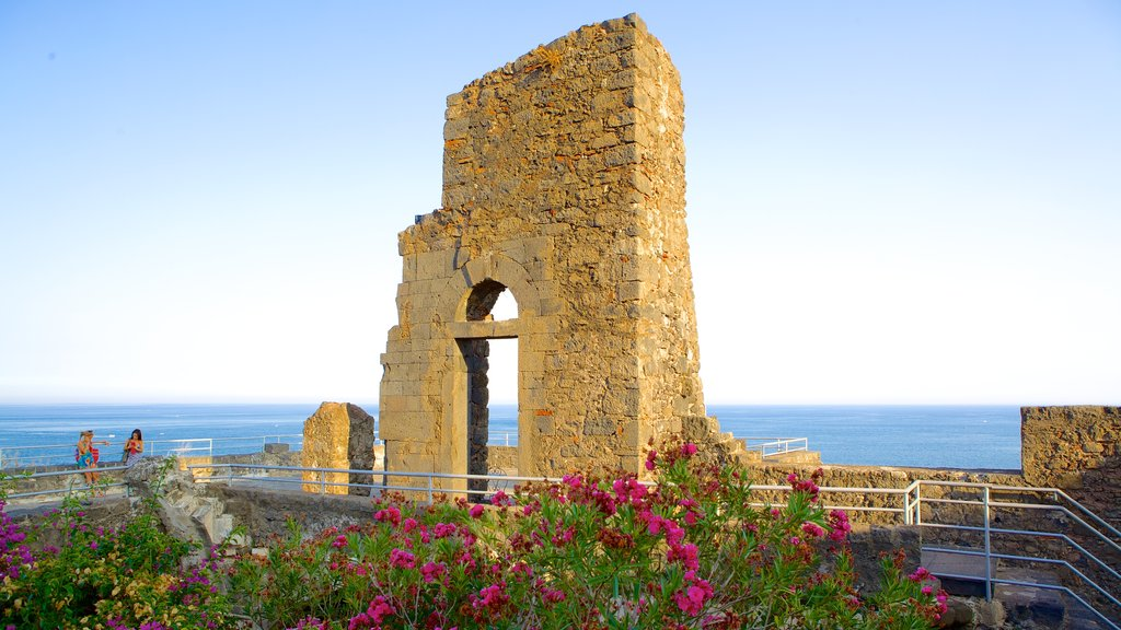 Aci Castello which includes a ruin, flowers and heritage architecture