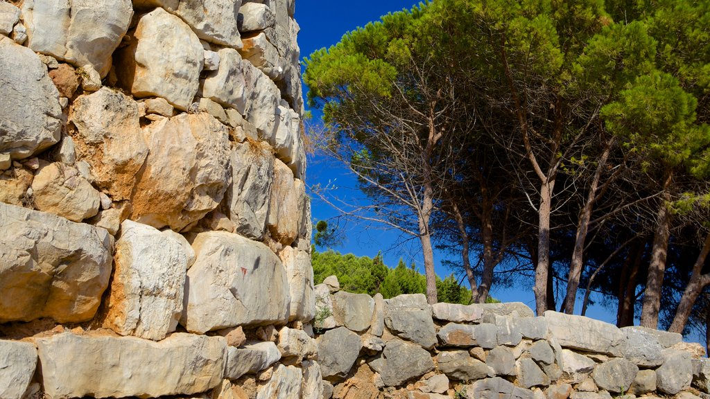 Nuraghe di Palmavera featuring a ruin