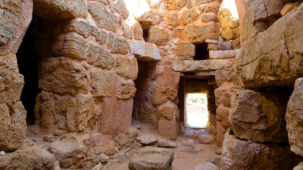 Nuraghe di Palmavera which includes a ruin