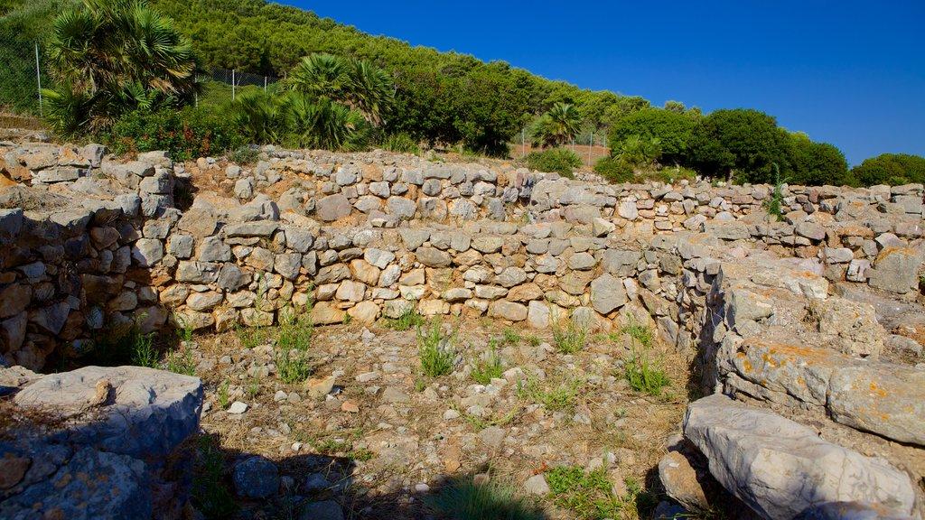 Nuraghe di Palmavera which includes a ruin and heritage elements