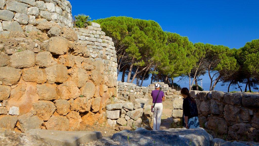 Nuraghe di Palmavera que incluye una ruina, patrimonio de arquitectura y elementos del patrimonio