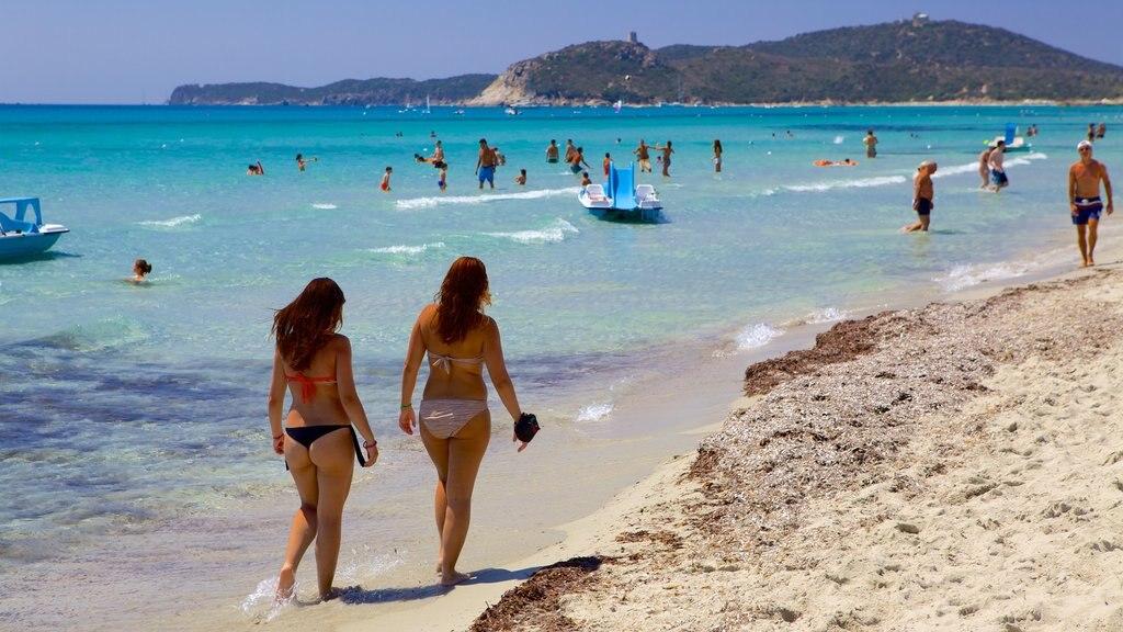 Playa Simius mostrando natación, deportes acuáticos y una playa