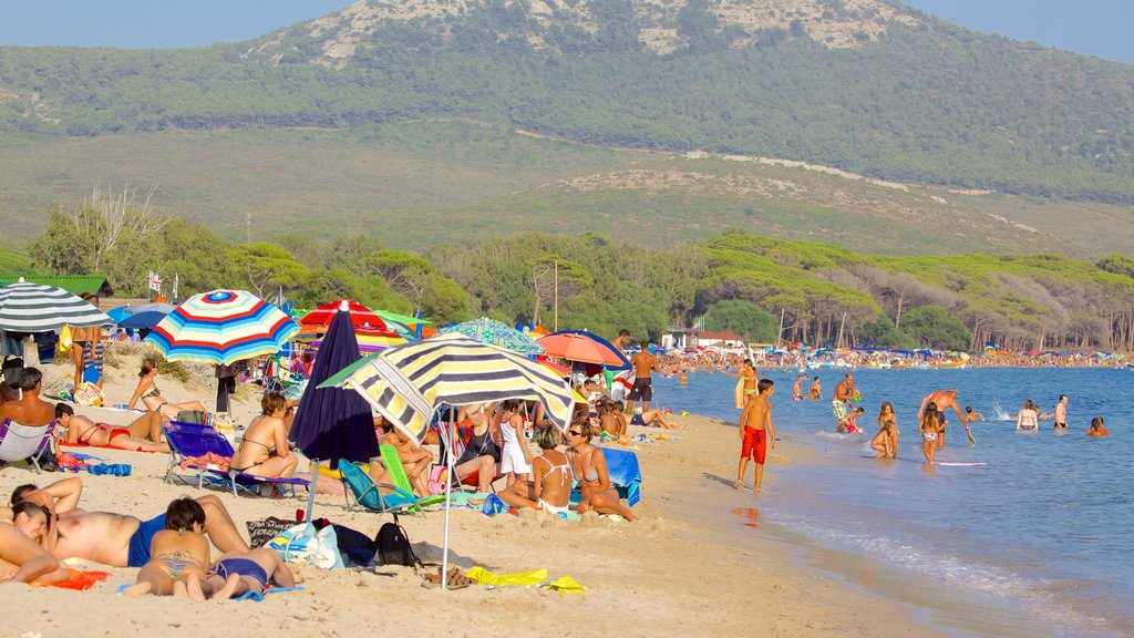 Mugoni Beach featuring swimming and a sandy beach as well as a large group of people