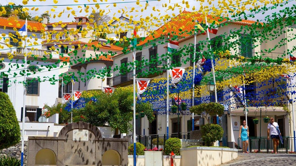 Ponta do Sol mostrando flores y escenas urbanas