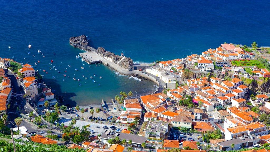 Camara de Lobos showing a bay or harbor and a coastal town
