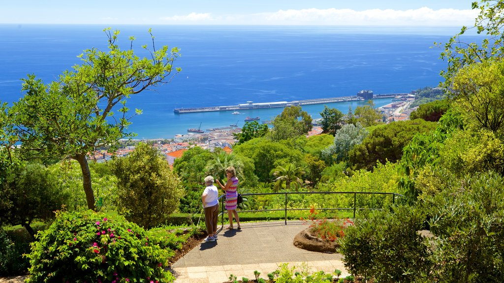 Funchal showing a park, views and a coastal town