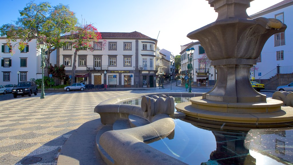Town Square which includes a fountain and a square or plaza