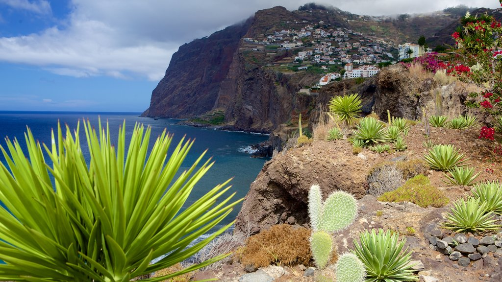 Cabo Girao ofreciendo costa rocosa y flores