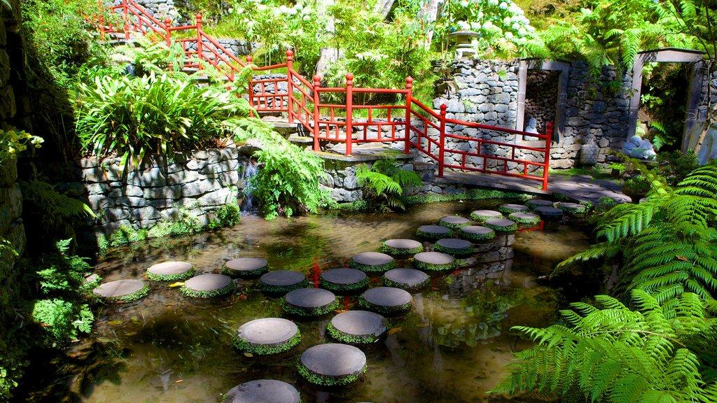 Monte Palace Gardens featuring a garden