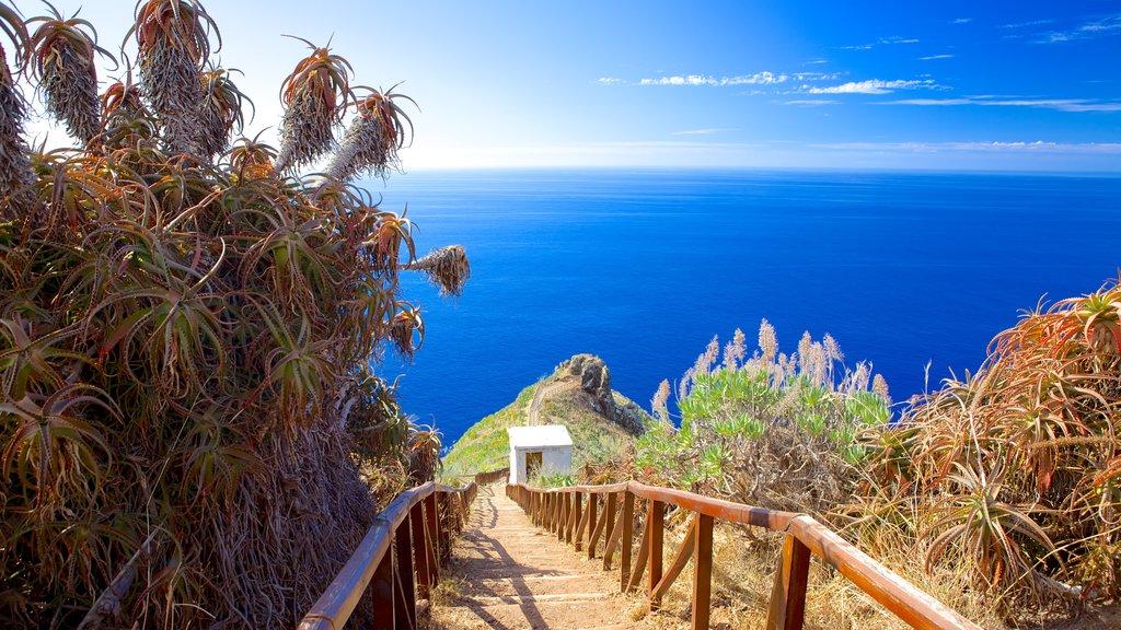 Ponta da Oliveira mostrando vistas generales de la costa y vistas de paisajes