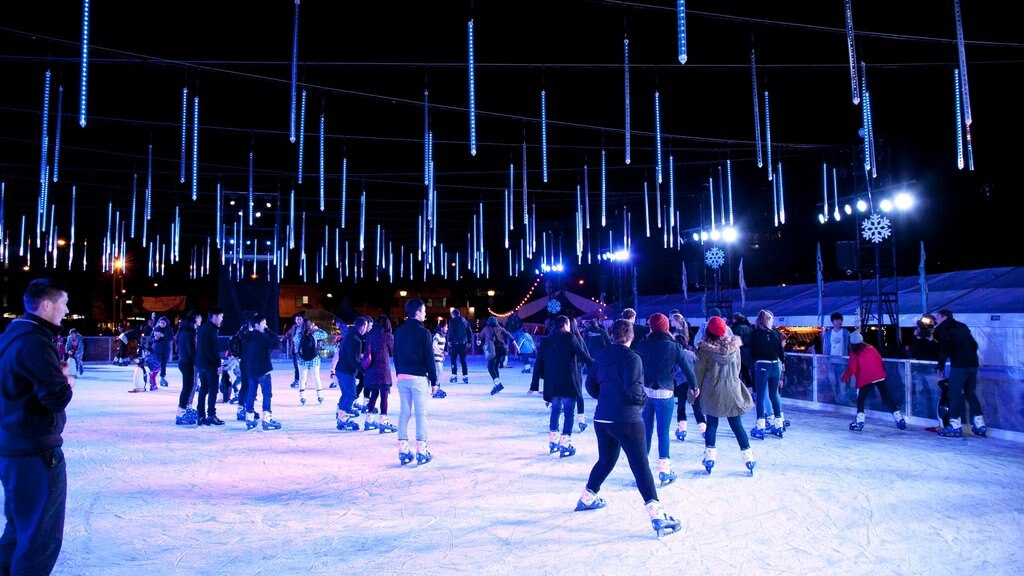 Parramatta showing interior views and ice skating as well as a large group of people