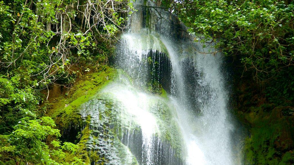 Mele Cascades featuring a waterfall