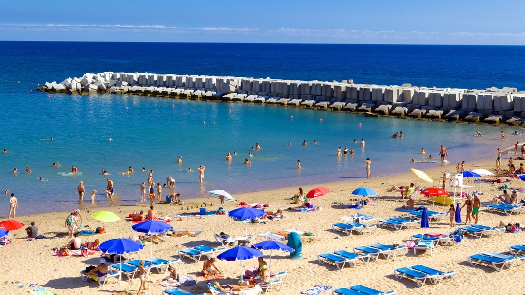 Madeira Island featuring swimming and a beach as well as a large group of people