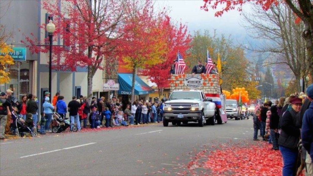 Roseburg featuring autumn leaves, a festival and street scenes