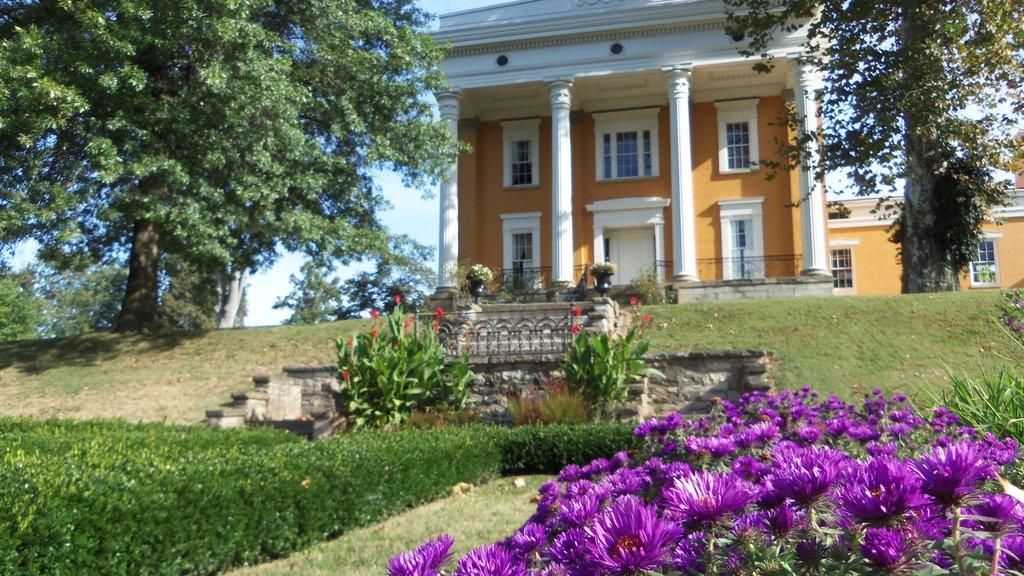 Madison mostrando un jardín, flores y una casa