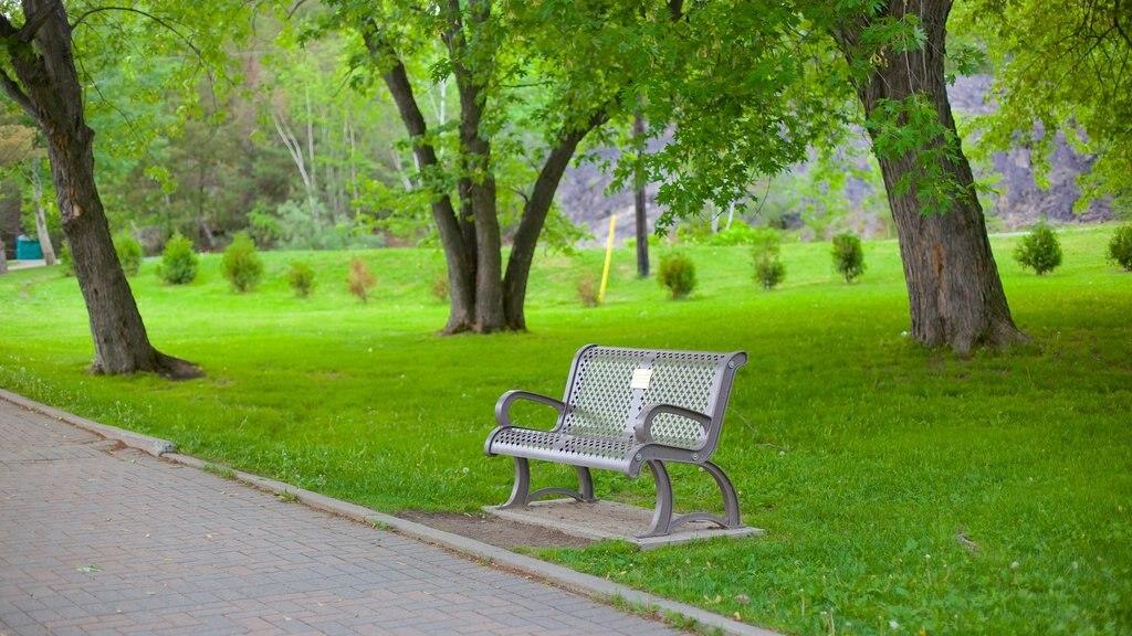 Sudbury featuring a park