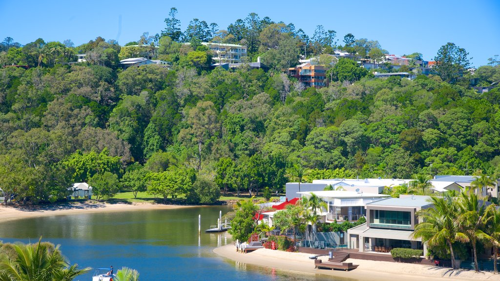Noosaville which includes general coastal views and a coastal town