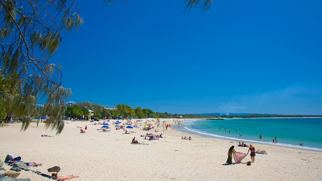Noosa Beach which includes a sandy beach and a bay or harbor as well as a large group of people