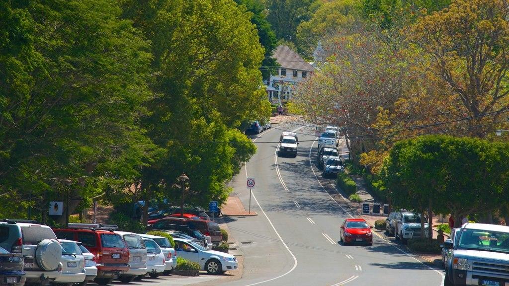 Montville showing street scenes