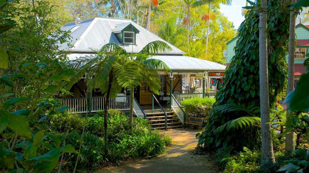 Montville featuring tropical scenes and a house