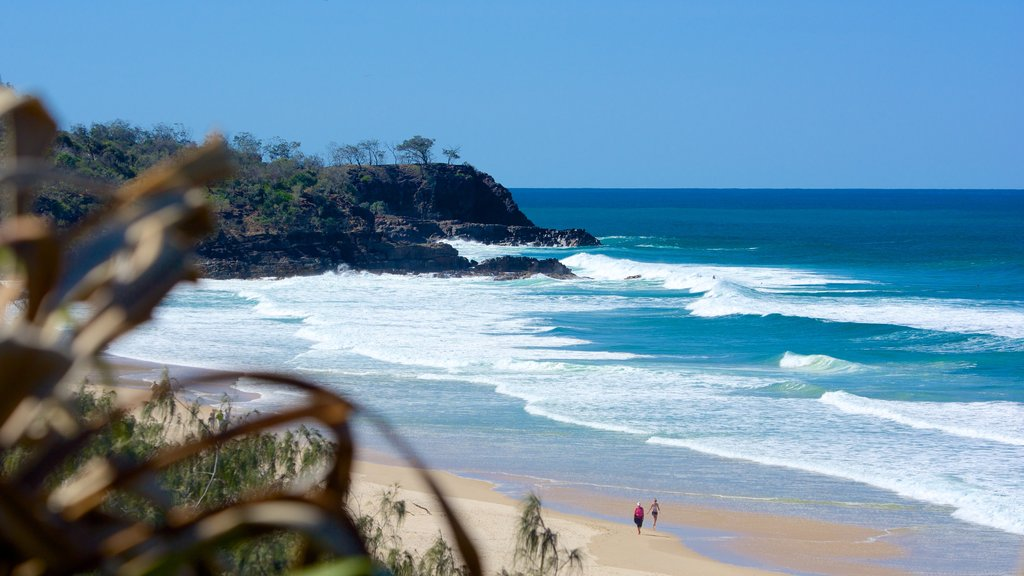 Sunshine Beach featuring a sandy beach and landscape views
