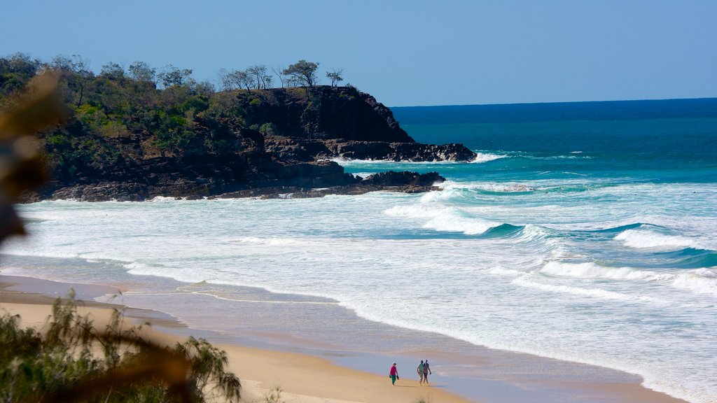 Sunshine Beach featuring a beach, rugged coastline and landscape views