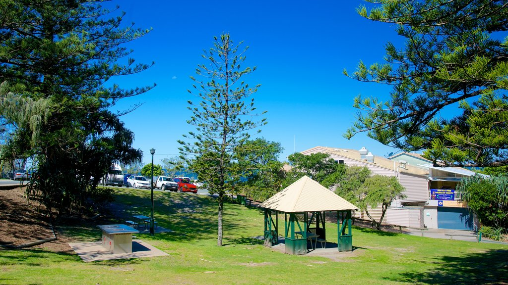 Sunshine Beach featuring a garden