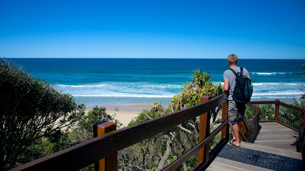 Sunshine Beach featuring general coastal views as well as an individual male