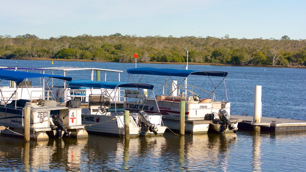 Noosa featuring boating, a bay or harbor and general coastal views
