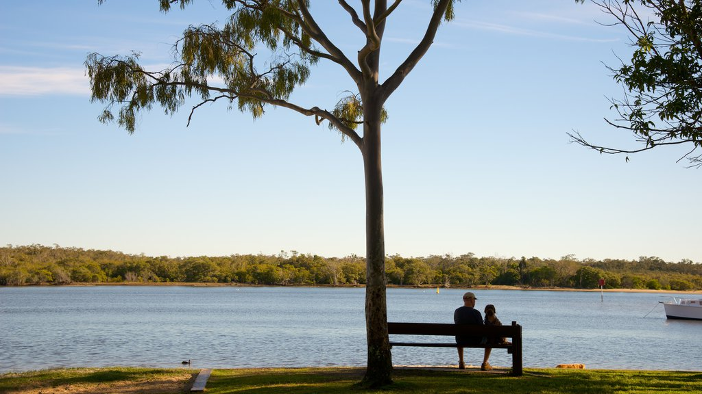 Noosa showing general coastal views and a park