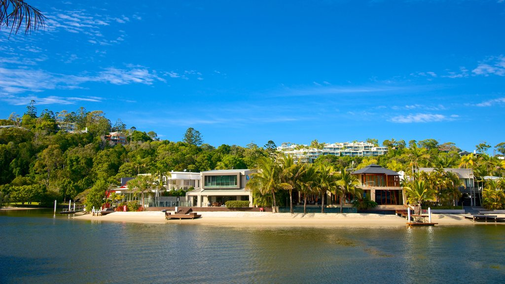 Noosa which includes a coastal town, general coastal views and tropical scenes