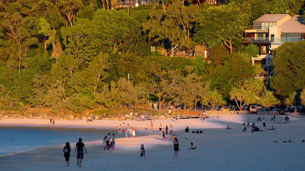 Noosa Beach which includes a coastal town, a sunset and a beach
