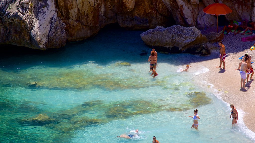 Zingaro Beach which includes swimming, a sandy beach and rugged coastline