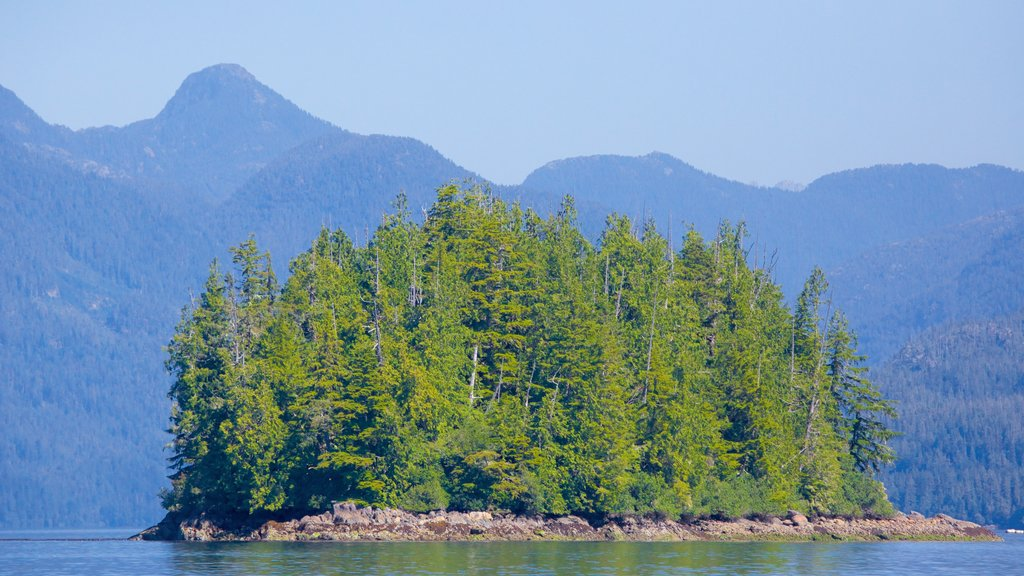 Tofino featuring forests, island views and rugged coastline
