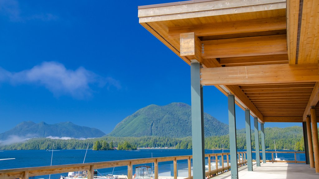 Tofino featuring general coastal views and views