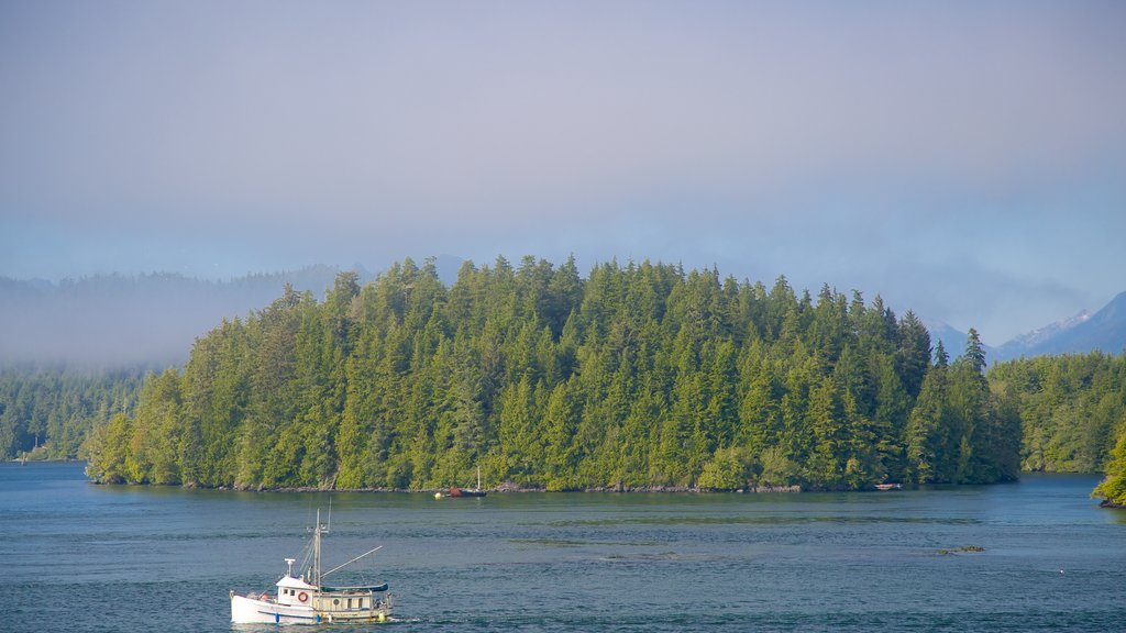 Tofino featuring forest scenes, general coastal views and boating