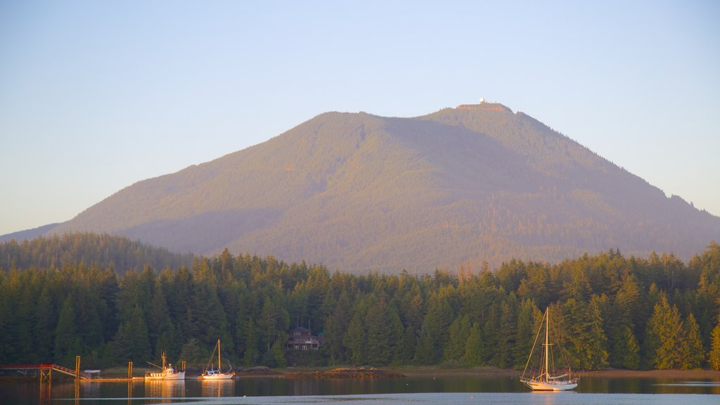 Ucluelet featuring forest scenes, mountains and general coastal views