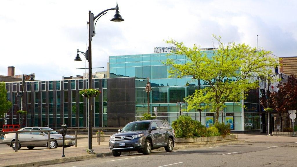 Sudbury featuring street scenes