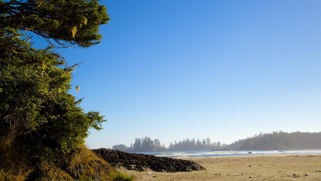 Pacific Rim National Park Reserve featuring general coastal views and a sandy beach