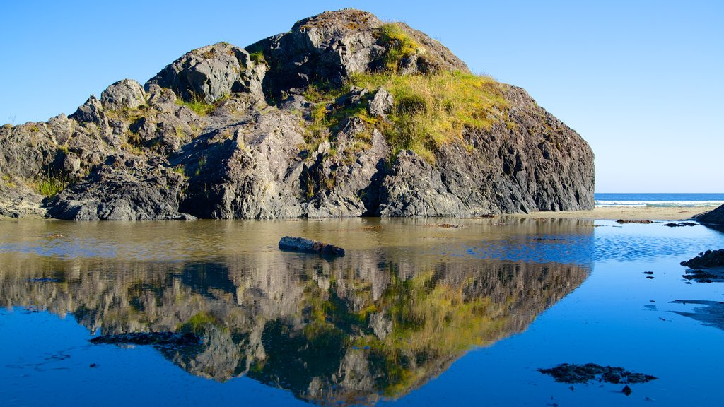Pacific Rim National Park Reserve which includes general coastal views and rocky coastline