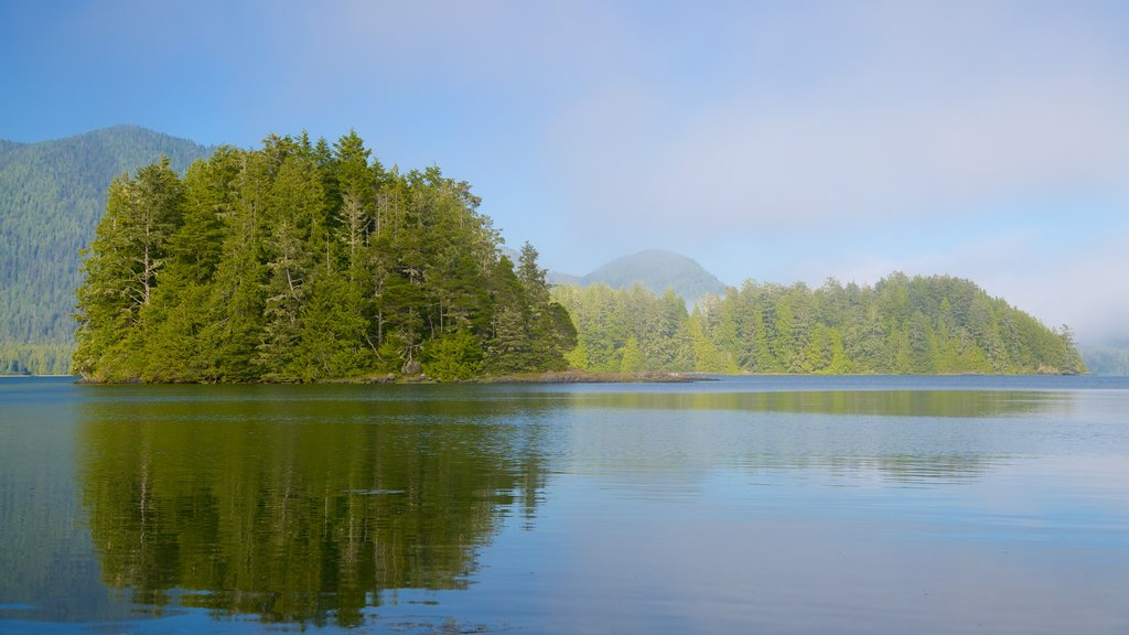 Tofino Botanical Gardens showing a lake or waterhole and forest scenes