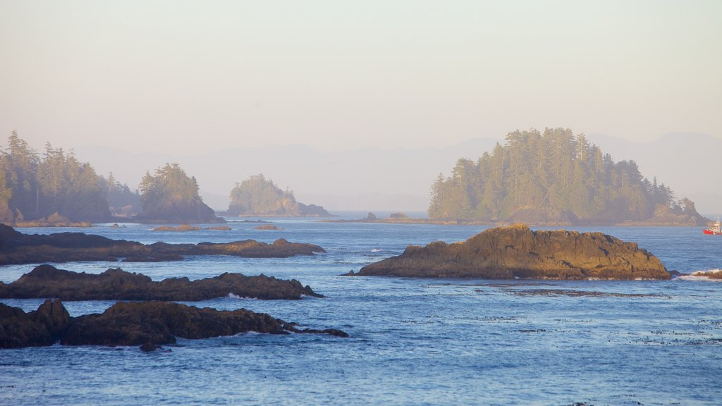 Wild Pacific Trail which includes general coastal views and rocky coastline