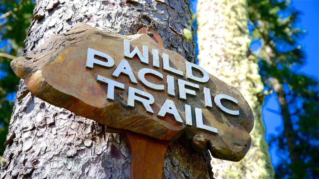 Ucluelet Big Beach featuring signage, hiking or walking and forests