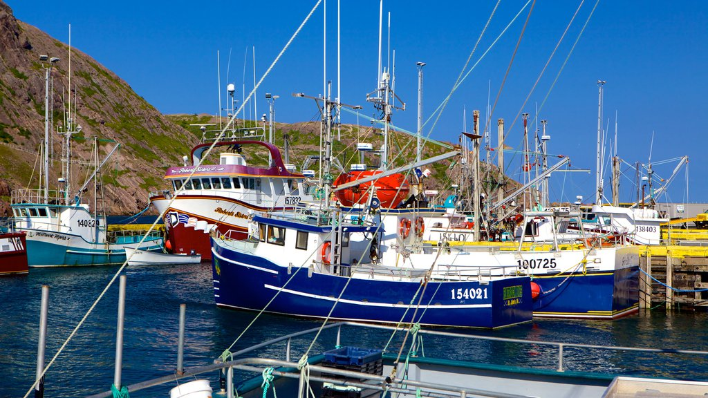 St. John\'s which includes a marina